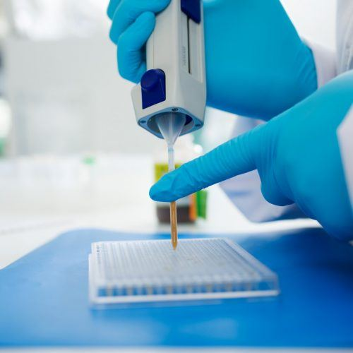 BaseClear laboraotry sequencing services