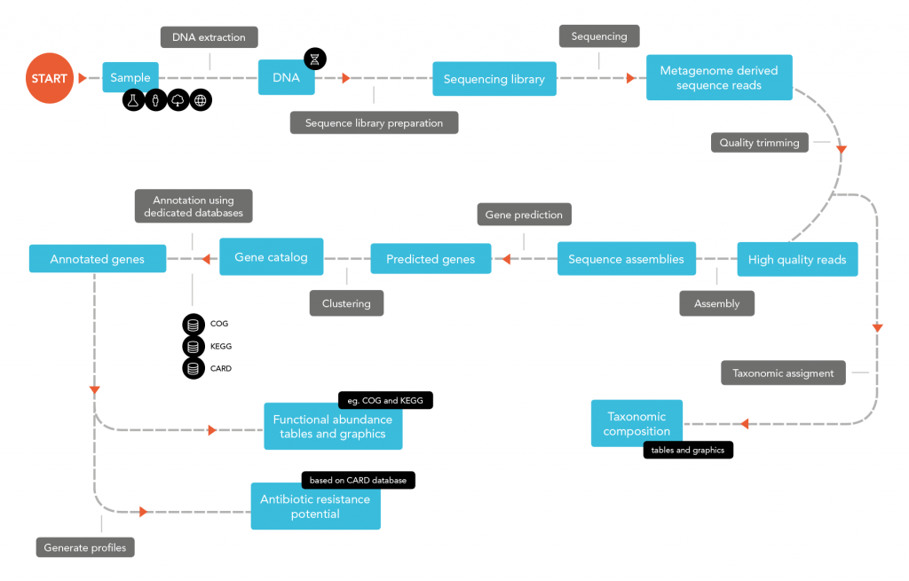Metagenomics flowchart BaseClear