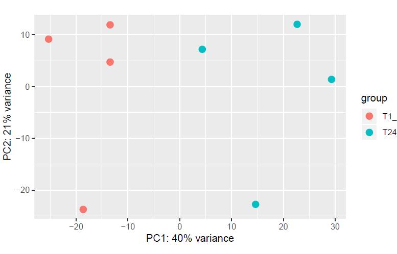 PCA plot
