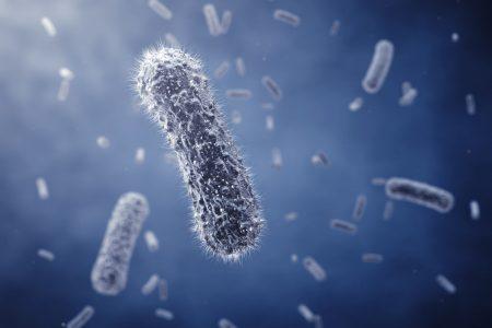 Gut microbiome analysis