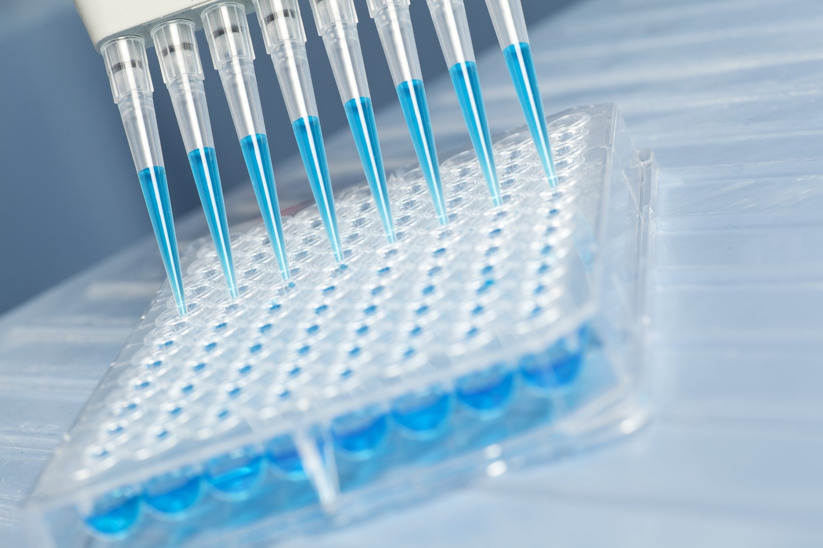 Protein expression and purification service | BaseClear B V