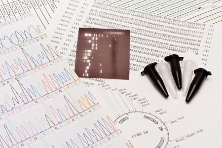 BaseClear Sanger sequencing services